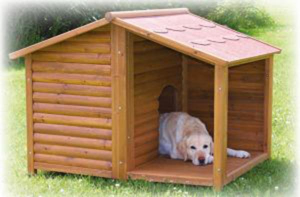 Como Escolher A Casinha Para Cachorro Ideal